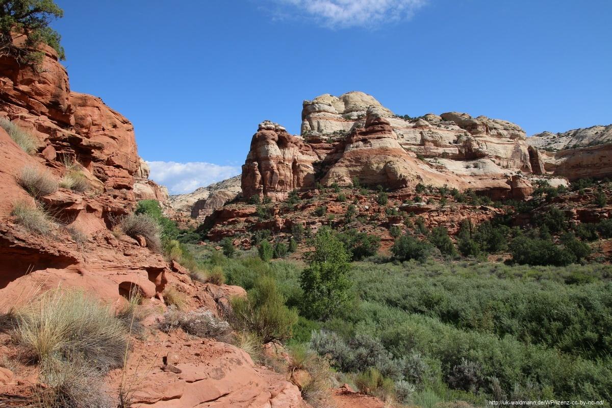 Hike-Lower-Calf-Creek-Canyon-005