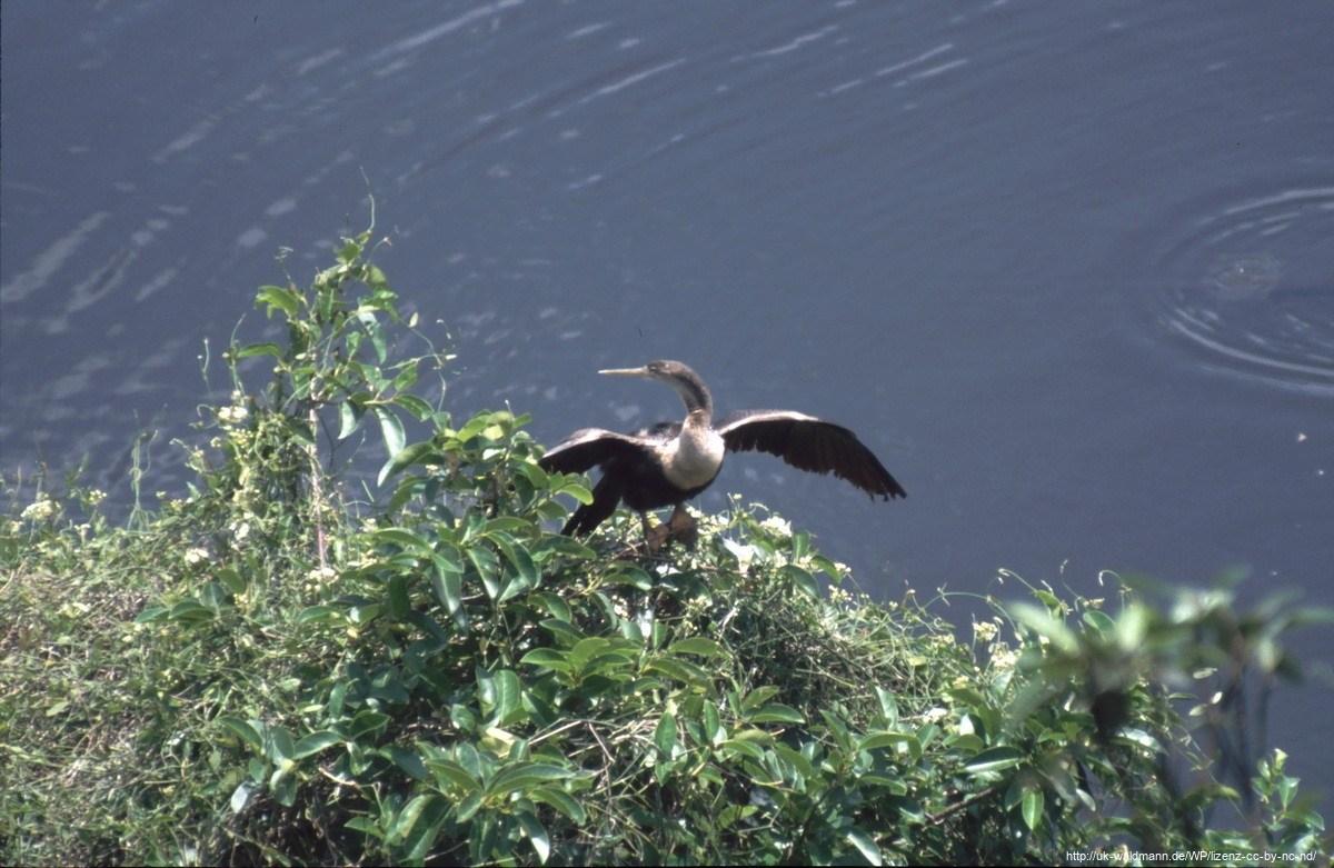 2000-Florida-053