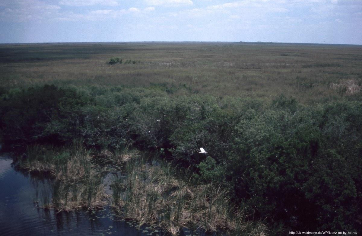 2000-Florida-055
