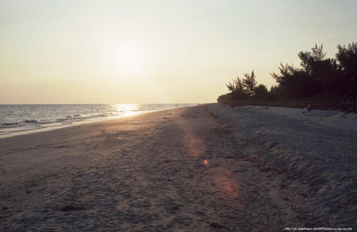2000-Florida-067