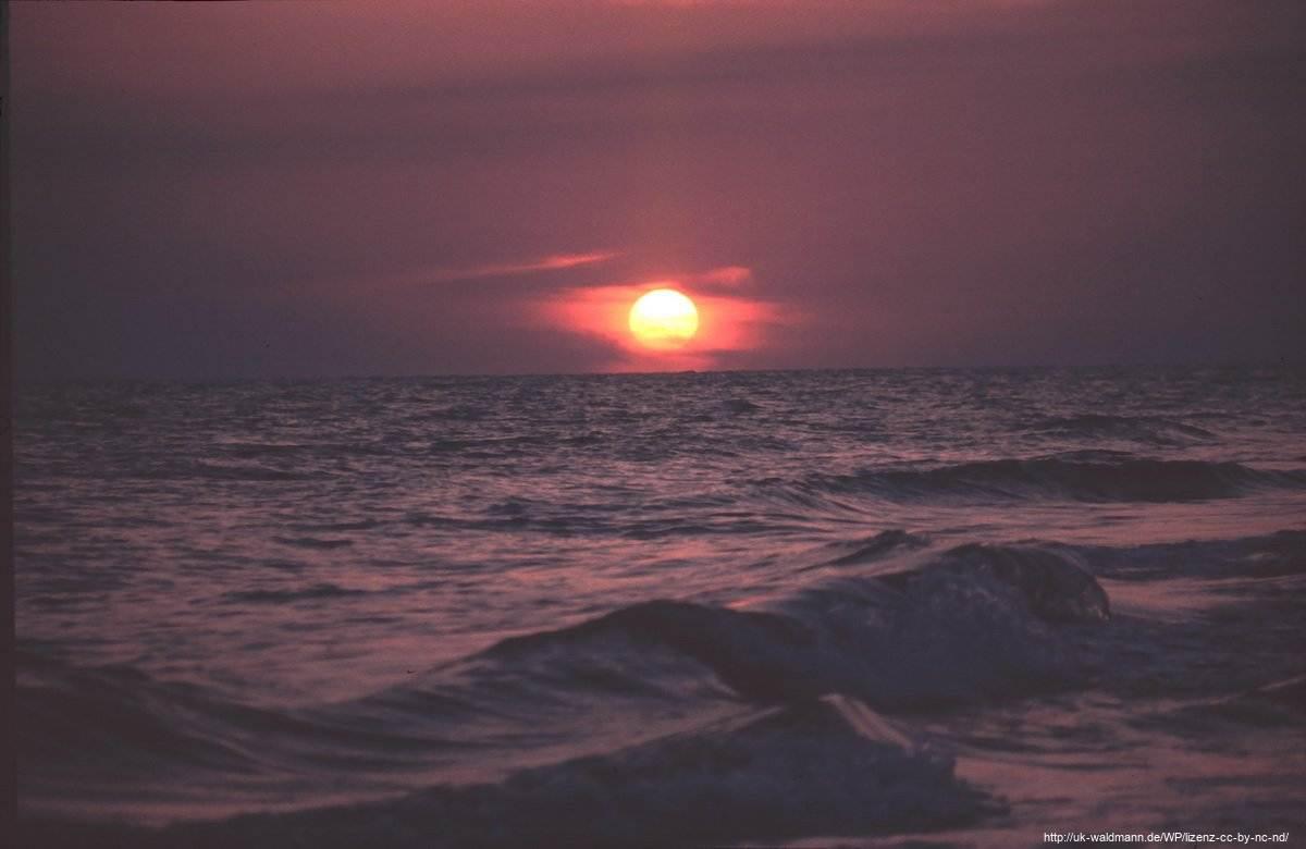 2000-Florida-078
