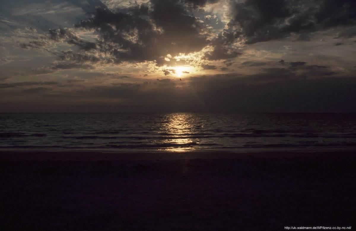 2000-Florida-101
