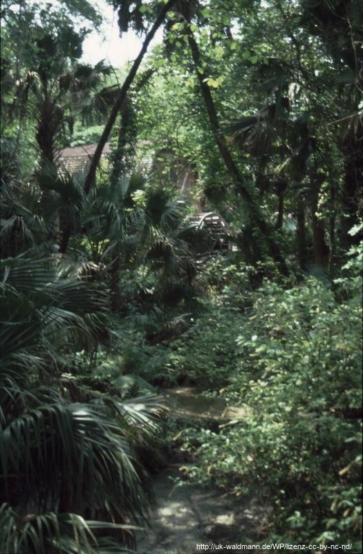 2000-Florida-105