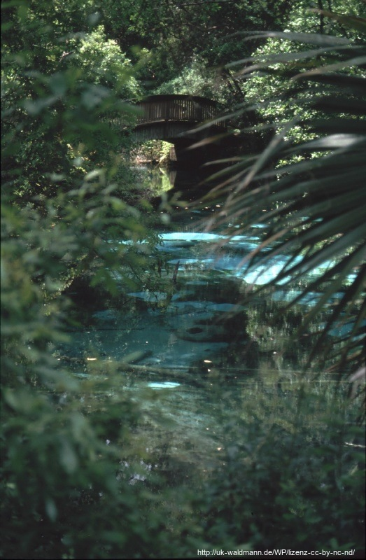 2000-Florida-107