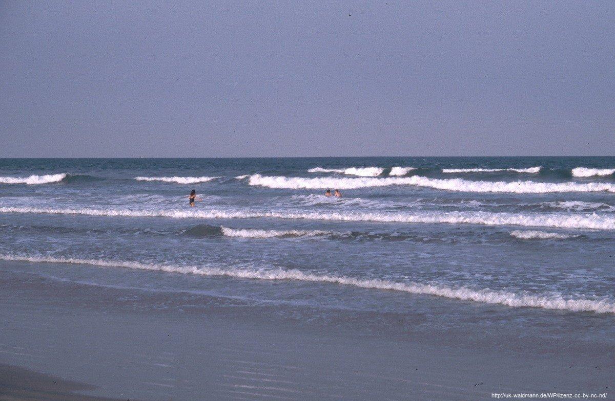 2000-Florida-148