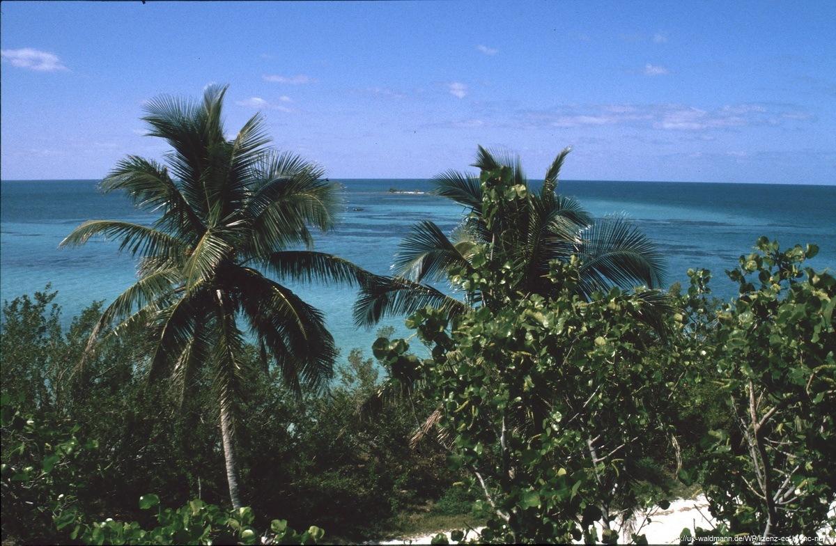 2000-Florida026
