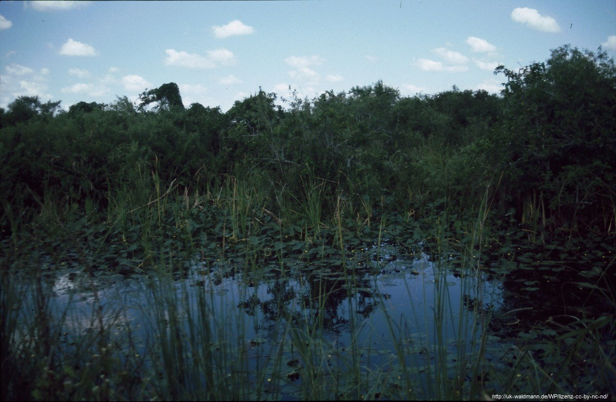 2000-Florida029