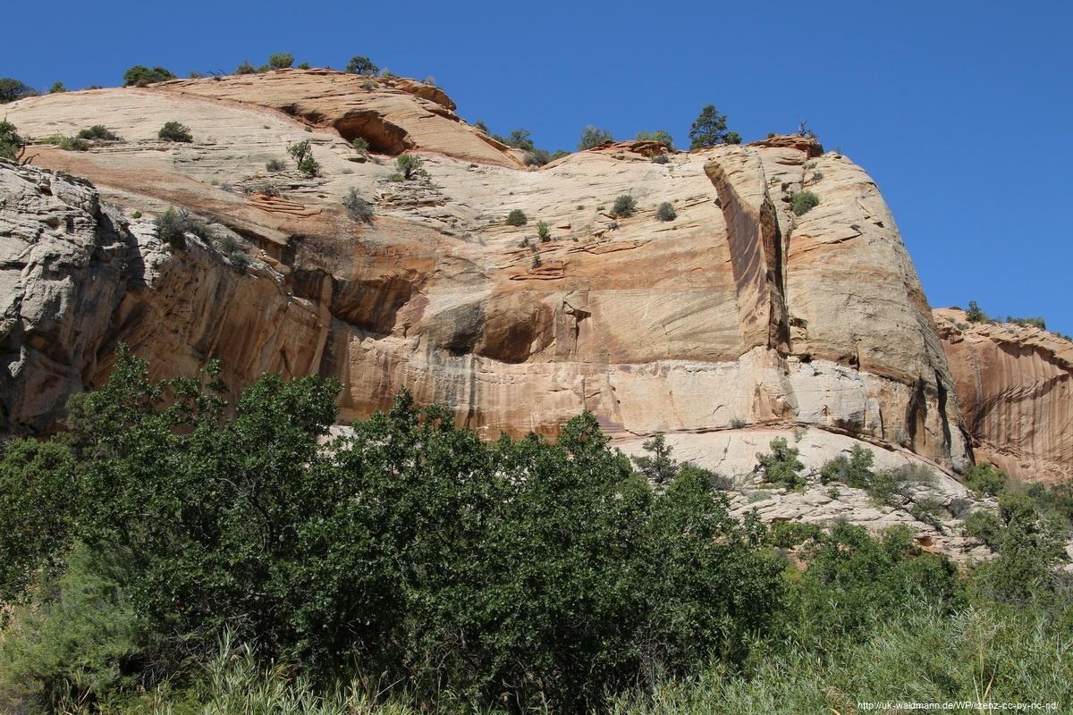 Hike-Lower-Calf-Creek-Canyon-012