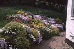 06000000-R8-Garten_004