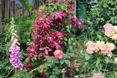 06102017-R8-Garten_034